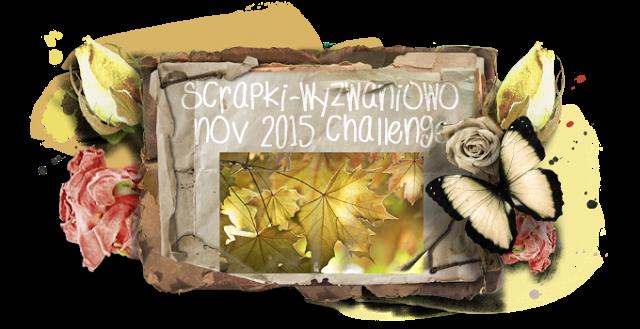 sw-board-11-2015